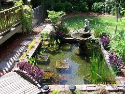 Garden Setup Ideas Backyard Koi Pond Gardening Design