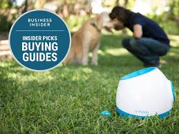 the best tech gadgets for pets business insider