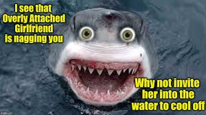 Nagging Girlfriend Meme - overly attached shark ii for shark week raydog and discovery