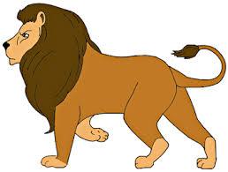 draw lion kids draw step step
