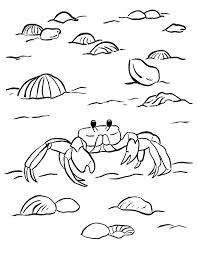 Ghost Crab Coloring Page Samantha Bell Crab Coloring Page