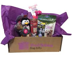 Pet Gift Baskets Small Dog Gift Box Petstay Dog Gifts