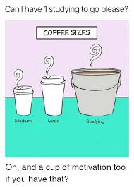 Studying Meme - can have 1 studying to go please coffee sizes medium studying large