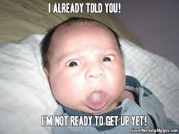 Laughing Baby Meme - funny baby face hd