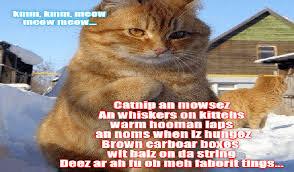 Cheezburger Meme Builder - i can has cheezburger lolcats page 6 funny animals online