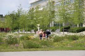 Types Of Urban Gardening Park Summary Details