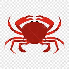 cartoon beer no background red crab flat icon on transparent background royalty free cliparts