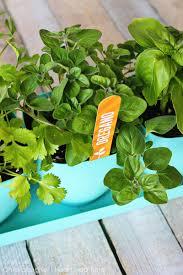 herb garden marker printables i heart nap time