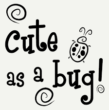 cute as a bug with ladybug and swirls wall art sticker girls vinyl cute as a bug with ladybug and swirls wall art sticker girls vinyl decals loading zoom