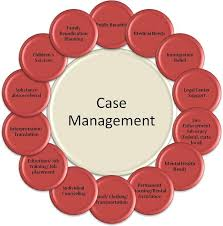 best 25 case manager ideas on pinterest social work counseling