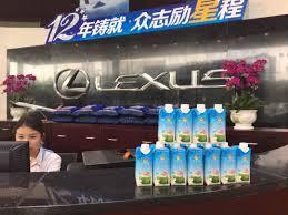 telepon lexus indonesia enesis group linkedin