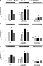 small gtpase rhoa and its effector rho kinase mediate oxygen download figure