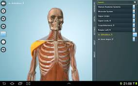 3d Human Anatomy Atlas Anatomy 3d Pro Anatronica Android Apps On Google Play