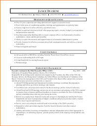 exle executive resume mis executive resume in excel ideas entry level resume