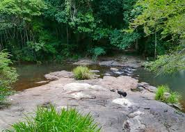 Gardeners Falls Maleny - things to do in maleny travel2next