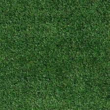 Grass Area Rug Turf Rug Cool Grass Area Rug Trail Mix Indoor Outdoor Premium