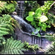 Okc Botanical Gardens by St Vincent U0027s Mental Home Oklahoma City Ok S1 Ep4 This Asylum