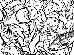 coloring pages monterey bay aquarium