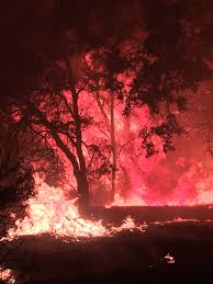 Large Wildfire Definition by Cascade Fire In Yuba County Grows To 5 000 Acres Cbs13 Cbs