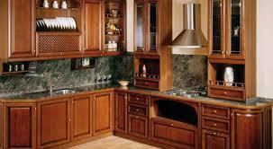 kitchen cabinet designs in india chics kitchen cabinets design ideas kitchen cabinets design