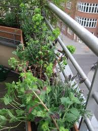 grã npflanzen fã r balkon balkon ohne dach gestalten top ein windlicht sorgt abends fr