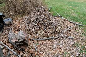 chicken manure vegetable garden compost pile nature provides