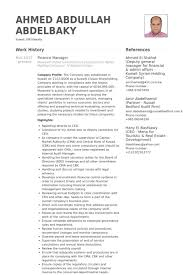 Finance Manager Resume Sample by Finance Manager Cv Examples Vntask Com