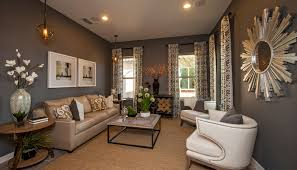 Living Room Ideas Brown Sofa Brown Wall Living Room Ideas Ecoexperienciaselsalvador