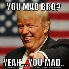 Why You Mad Bro Meme - dana perino on twitter judgenap on the russia probe