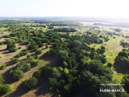 carter u0027s coffee cup ranch on rocky creek cade richmond hay land
