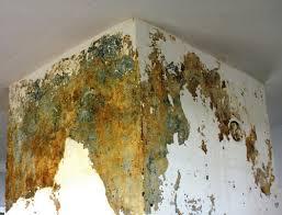 chimney leaks 5 reasons for a leaking chimney