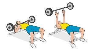 Training Bench Press The Zlatan Ibrahimovic Workout Fourfourtwo