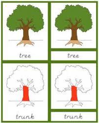 Montessori Tree Printable | botany the helpful garden montessori classroom resources