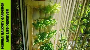 Ikea Raised Garden Bed by Vertical Gardening Ikea Shoe Organizer Hack For Growing Greens