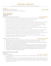 Resume With Color 100 Resume With Color Professional Resume Writers 14625