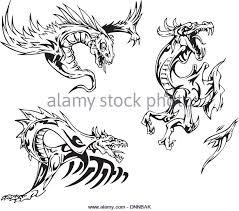tribal dragon tattoo designs stock photos u0026 tribal dragon tattoo