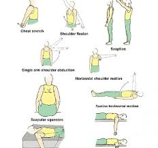 frozen shoulder exercises physical therapy