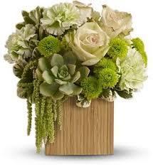chico florist bamboo mist chico florist