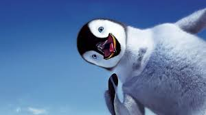 penguin wallpaper wallpapers browse