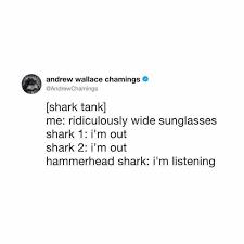 Shark Tank Meme - dopl3r com memes andrew wallace chamings andrewchamings