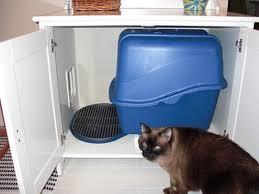 Ikea Litter Box Cabinet Cat Litter Box Furniture Ikea Using Flaren Sink Cabinet Tidy Cat