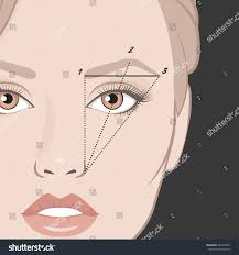 How To Shape Eyebrow Vector Illustration Woman Face Eyebrow Mapping Stock Vector