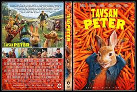 rabbit dvd rabbit tavşan custom dvd cover türkçe 2018 covertr