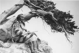 blackfoot native plants arrow top piegan t j hileman photo c1930 blackfoot men