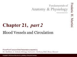 Fundamentals Of Anatomy And Physiology 9th Edition Download 21 Blood Vessels And Circulation C H A P T E R Ppt Video Online