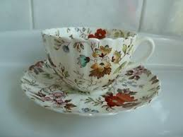radfords fenton the gatineau fine bone china cup and saucer set