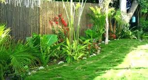 Bamboo Garden Design Ideas Landscape Bamboo Stzy Co