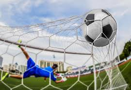 Soccer Net For Backyard by What Are The Different Types Of Backyard Nets With Pictures