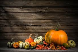 thanksgiving stock photo image 45272311