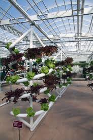 35 best hydroponic display gardens images on pinterest